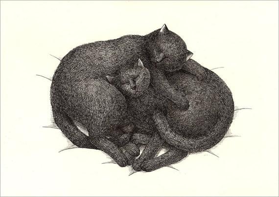 A4 Cat Print - Sleep together