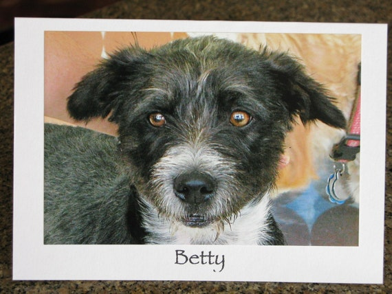 Betty - Animal Rescue Greeting Card - DONATION to Rescue Group