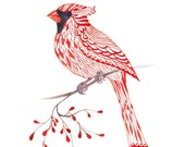 Cardinal Bird - lacy cardinal on branch art print, size 8x10 (No. 1) - TevaGallery