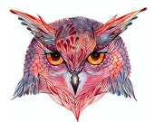 Owl face (Owla) // SALE 1+1 // Buy one get one FREE, wild bird face water color art print, size 7x5  (No. 27s)