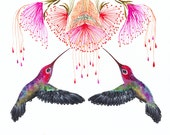 Hummingbirds and flower // SALE 1+1// Buy one get one FREE, Together, birds watercolor art print, size 10x8 (No.29b)