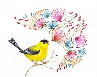 Singing Goldfinch, songbird art print, little bird by OlaLiola, size 10x8 (No. 45)