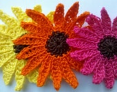 End of Year Sale 6 Handmade Large Crochet Shasta Daisy Appliques Sewing Bow