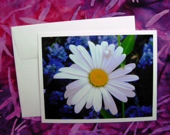 Daisy Flower & Spider Card - Blank Inside