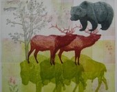 Bison, Elk, Grizzly and Whitebark Pine Etching