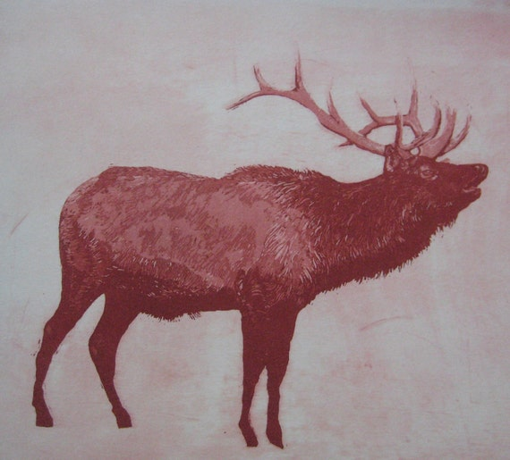 Bright Red Elk Etching