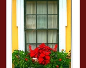 """Window Box Flowers Yellow Red Photography 8x10 """"Print Only"""""""