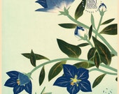 Blue Flowers and Grasshopper, Japanese Art Print (VINTAGE, 57 years old)