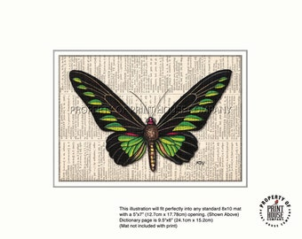 Original art, green butterfly printed on an 1852 French-English dictionary page