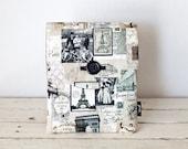 iPad Air 2 Case, iPad Sleeve, iPad Cover - Padded with Pocket - Paris Vintage Postage- iPad Air Case
