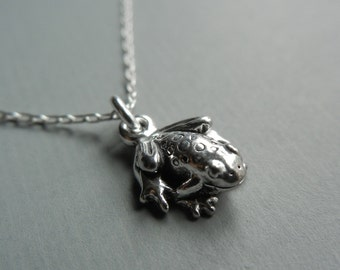 Teeny Frog Necklace