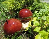Handcrafted Gourd Shaker Set