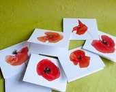 Set of 6 Notecards - Poppies
