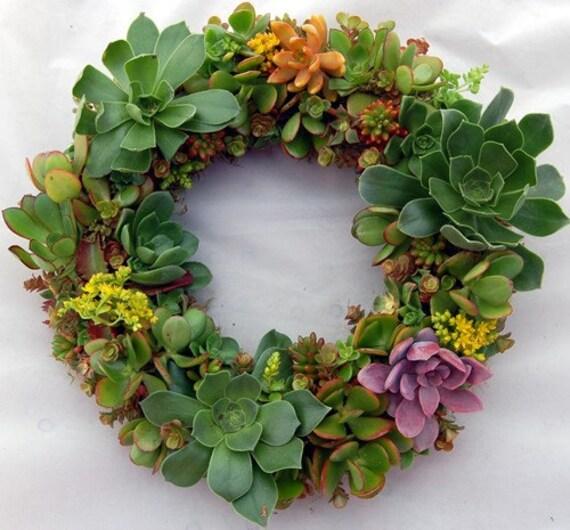"""Flowering Spring Succulent Wreath 14"""""""