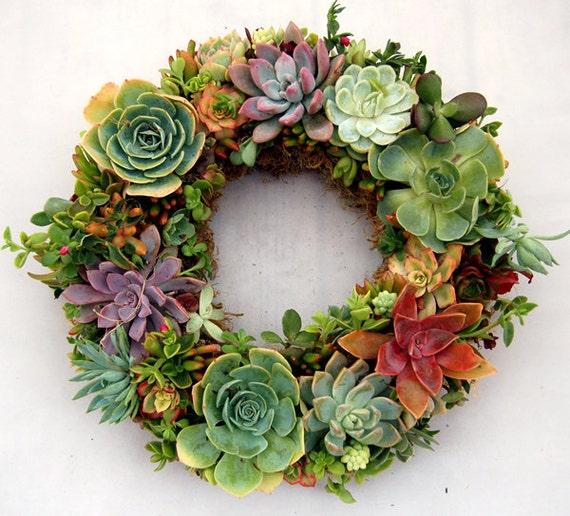 """Succulent Wreath Large Colorful Succulents14"""""""