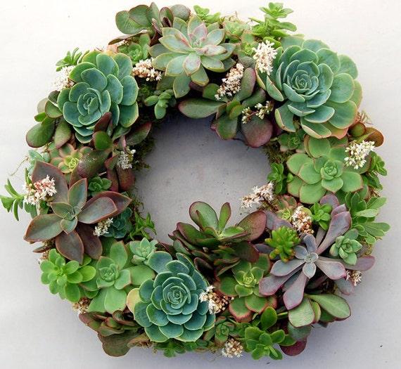 """Succulent Wreath Fairy Dance 14"""""""