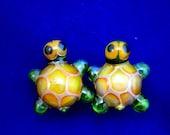 0g glass turtle plugs