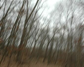 Fall Movement 1