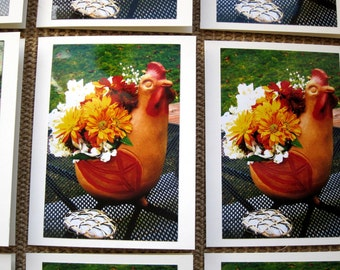 Set of 12 Blank Photo Greeting Cards: Clay Chicken Flower Pot with Dried Flowers