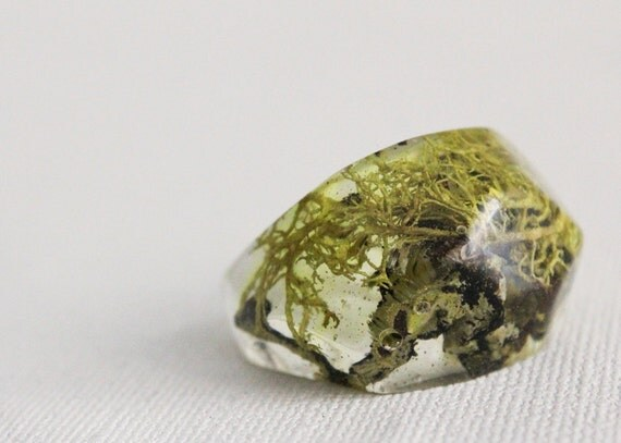 lichen and moss eco resin pebble shaped ring