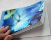 Notebook/Sketchbook/Journal - 4x6 - Blue Hydrangea- Original Photograph