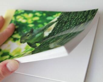 Notebook/Sketchbook/Journal - 4x6 - Peek-a-Boo - Original Photograph