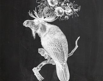 Vintage Parrot Moose on Chalkboard Print 8x10 P133