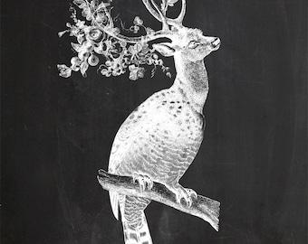 Vintage Owl Deer on Chalkboard Print 8x10 P135