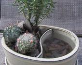 Bone Glazed Ceramic Succulent Planter W/ Black Sand, Slate and Reflecting Pool