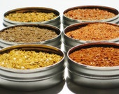 Veterans Day SALE - BBQ / Grill Dry Spice Rub Sampler - variety of 6 gourmet rubs - culinary diy gift for guys / foodies