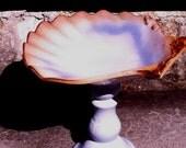Upcyled Oyster Shell Bird Bath or Bird Feeder -OOAK
