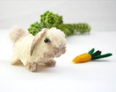 Coco the Lop Eared Bunny with magnetic Carrot Pin