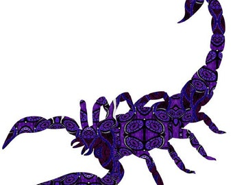 INSECT WALL ART, Bug Wall Art, Bugs for Kids Art, Insect Diagram, Bugs Art, Scorpio Birthday, November Birthday Gift, Scorpion Painting,