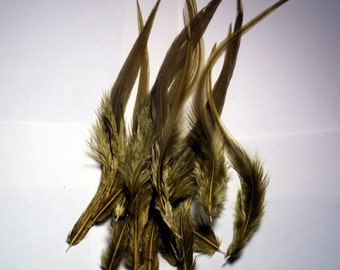 12 Thick rooster saddle hackles dyed olive 6 to 10 inches k222