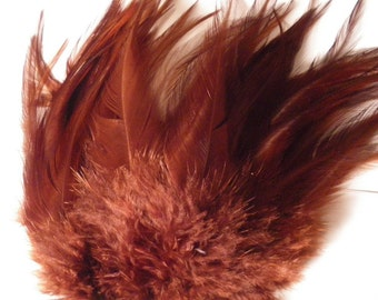 craft pack Feathers brown Saddle coachman 3 to 5 inches