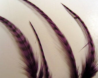 24 thin purple grizzly feathers thin 2  to 5 inches craft feathers