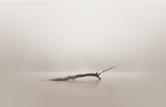 nature photography, minimalist art, minimalist photography, minimal, minimalist, minimalism, landscape, fog, foggy, 12 x 8 print