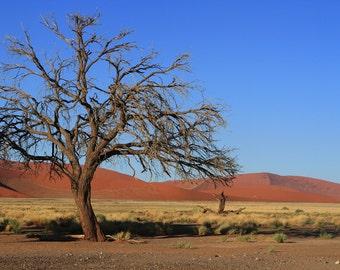 Fine art photography print, nature photography. Namibia. Sossus Vlei Dunes.