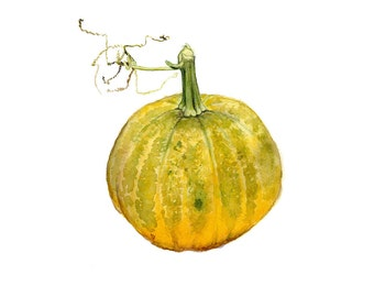 Pumpkin, Original Watercolor Painting