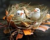 Rustic Love Birds Cake Topper - Rustic Wedding - Spring Weddings - Summer Fall Winter Decoration - Decor