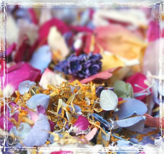 Fling  Petal Confetti - Toss Or Decoration - Freeze Dried Floral - Summer Wedding - Bright Pastel - Weddings - Send Off - Flower Girl
