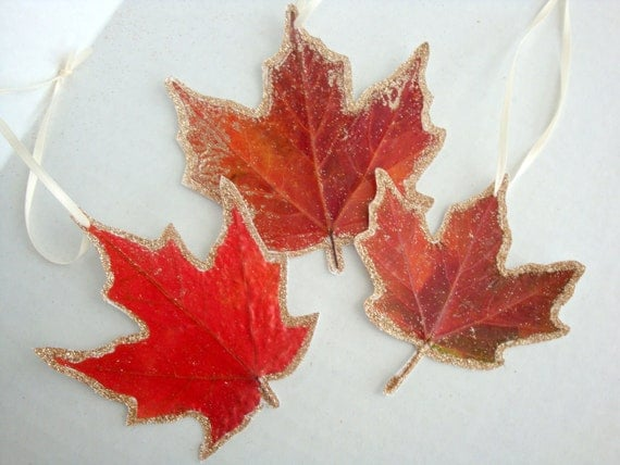 Maple Leaf Ornaments-Real Maple Leaves Glittered for gift tags --Set of 2