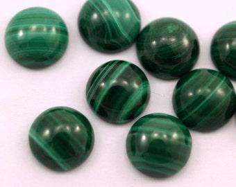 Malachite cabochon 2 pcs 10 mm 100CB