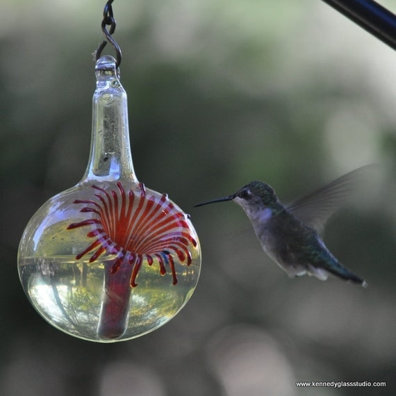 OR- The Kennedy Style Hummingbird Feeder, The Original One Piece Drip-less Hummingbird Feeder