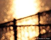 Golden Sunset, light ,circles, water, black, blurry, orange, dreamy