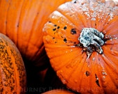 Beautiful Imperfection - Digital Image - Fall, Halloween, Autumn, Pumpkin