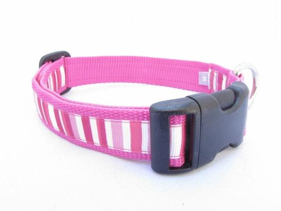 MEDIUM Hot Pink Strip Dog Collar