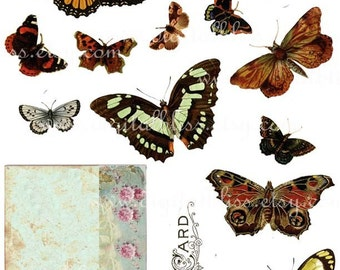 Digital Download Build Your Own Postcard with Butterflies ECS