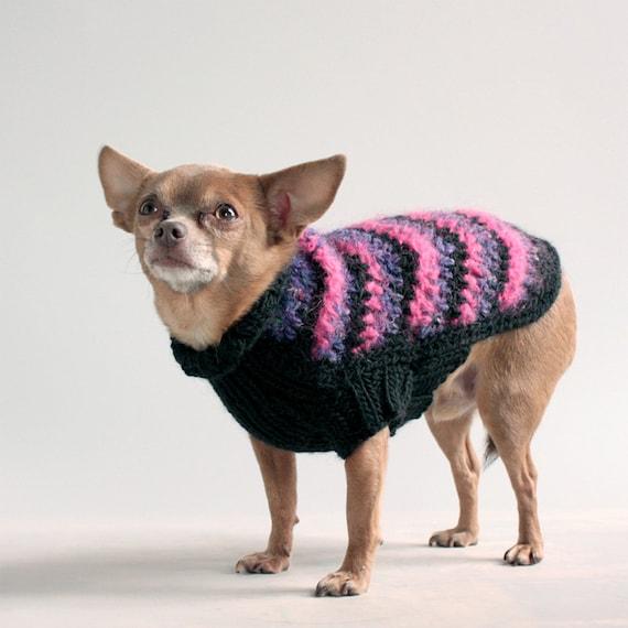 Zigged when he should've  Zagged,  XS Chevron Dog Sweater