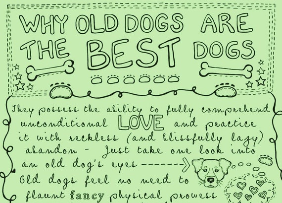 Why Old Dogs Are The Best Dogs - 8x10 ART PRINT Dog Poster - Mint Green